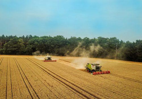 Agrargenossenschaft-Feld
