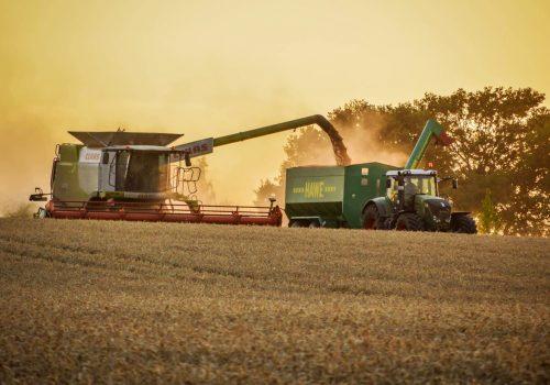 Agrargenossenschaft-Weide-Feld